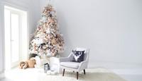 Christmas Trees (1)