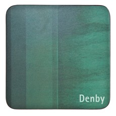Denby Coasters Set of 4 - Green