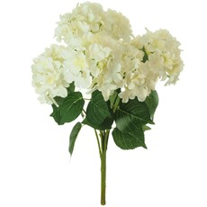 Silk Mophead Hydrangea Stem Bunch - Cream