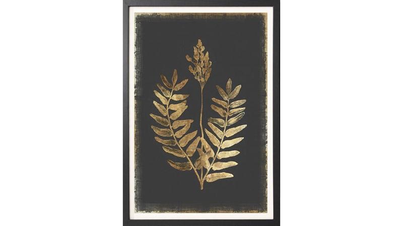 Flowering Fern Framed Print