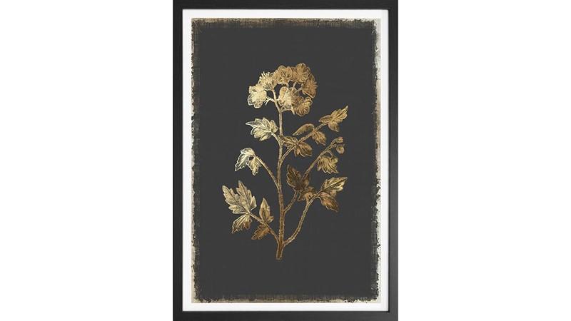 Cut Leaves Framed Print