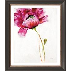 Big Red Blossom Framed Print