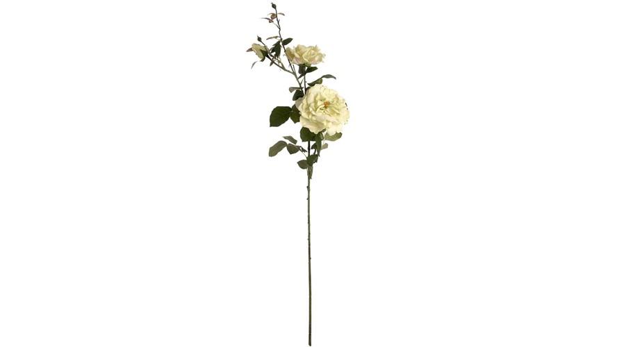 Rose Stem - Green