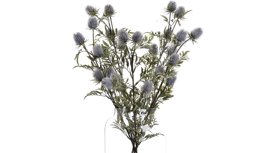 Thistle Eryngium Stem - Blue