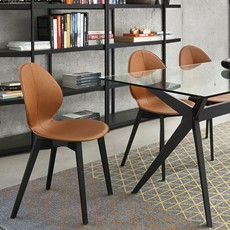 Calligaris Dining Chairs Basil Dining Chair