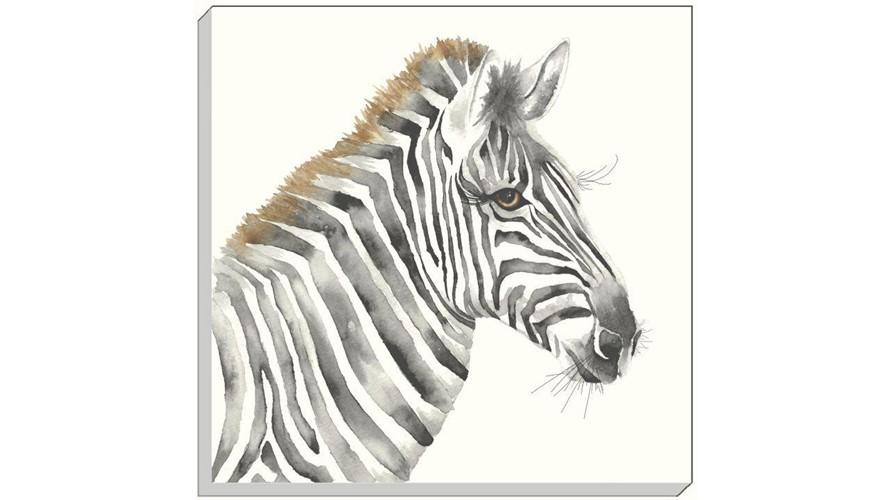 Safari Zebra Canvas