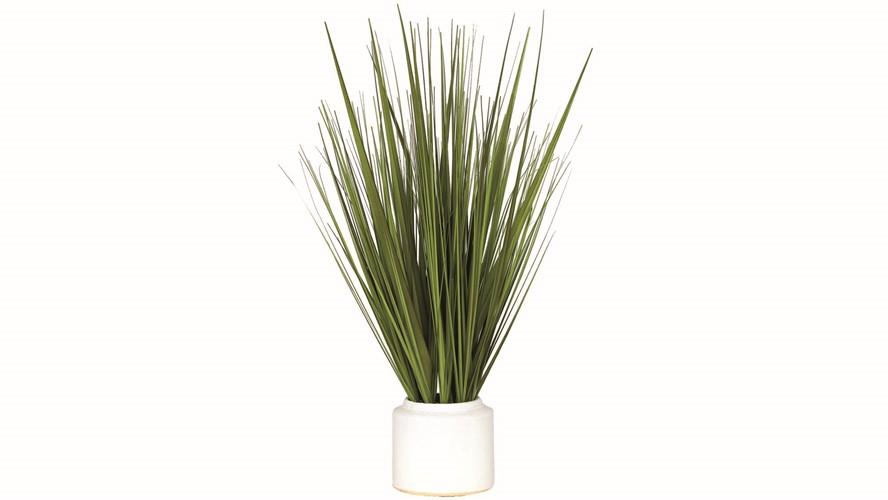 Potted Grass Bundle