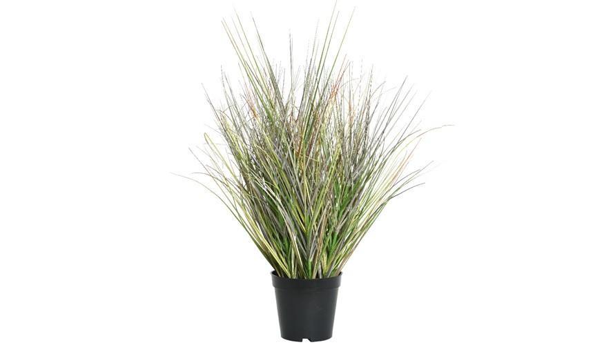 Grass In Pot - Medium
