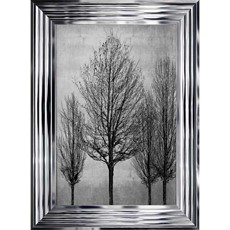 Tree Line 2 Framed Print