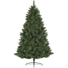 Ontario Green Pine Christmas Tree