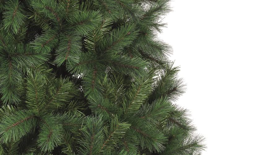 Ontario Green Pine Christmas Tree