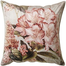 Botanical Square Cushion - Blush