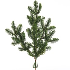 Fir Green Normann Branch