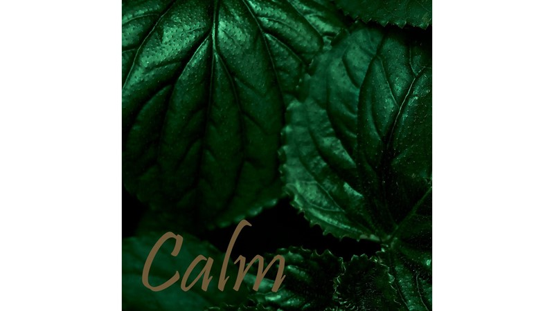 Tropical Calm Framed Print