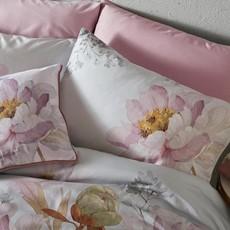 Ted Baker Butterscotch House Wife Pillow Case Pair - Grey