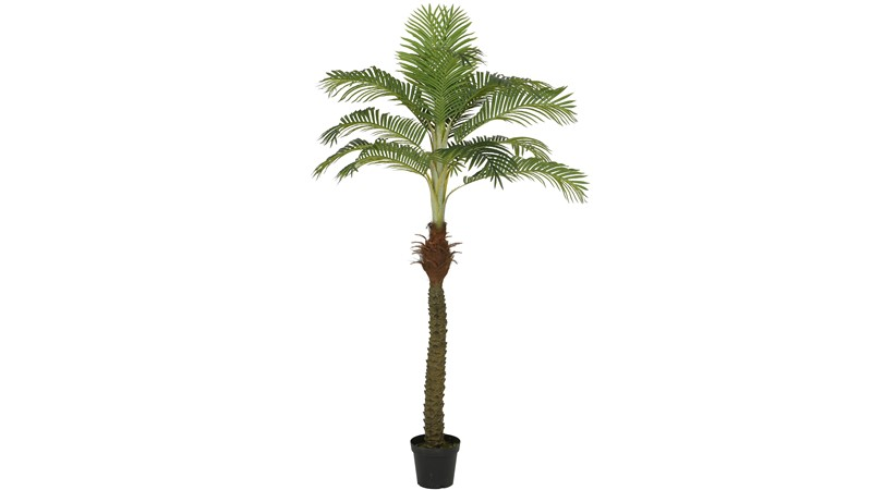 Plastic Palm Tree In Pot