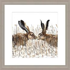 Kissing Hares Framed Print
