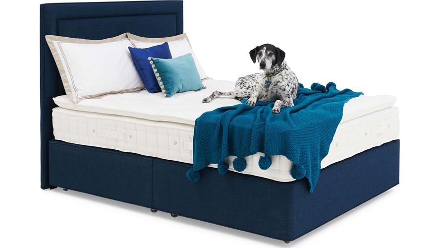 Andante Pillow Top Divan Set