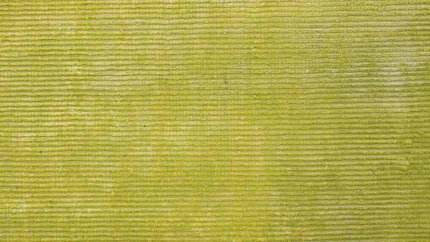 Reko Rug - Lime